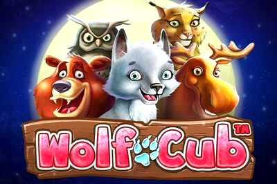 Top Slot Game of the Month: Wolf Cub Slot
